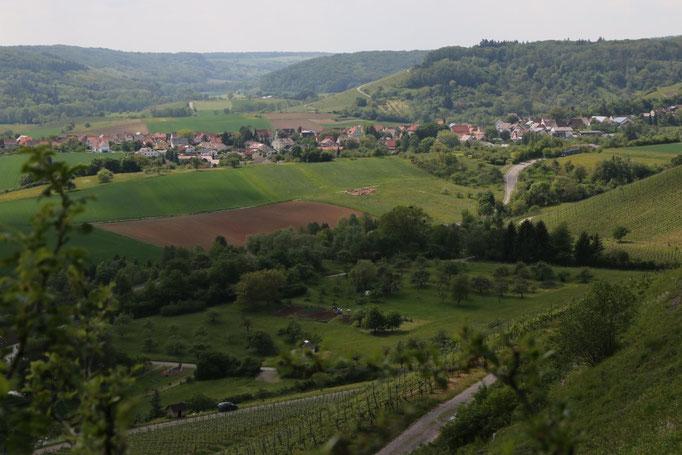 Ochsenbach