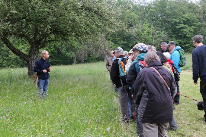 Stefan Hornstein erläutert den Trockenrasen