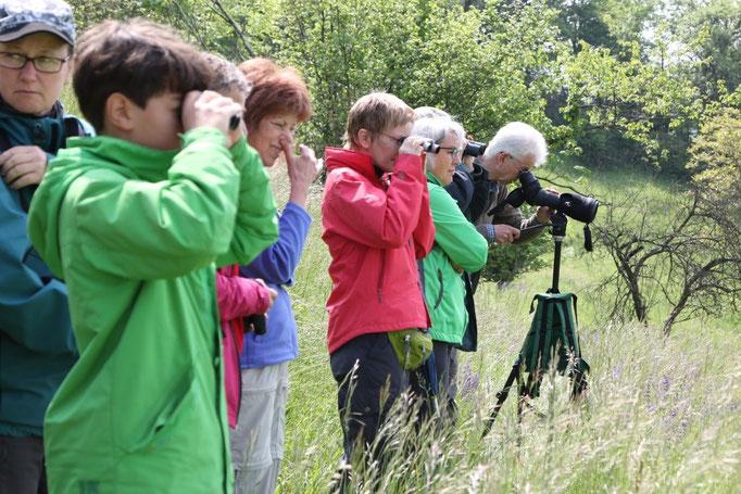 Christoph Kaup zeigt die Vögel am Spektiv