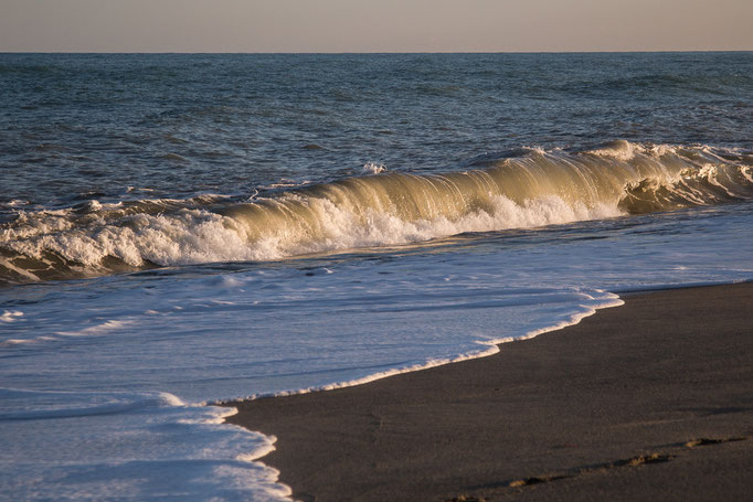 tosende Wellen im Abendlich