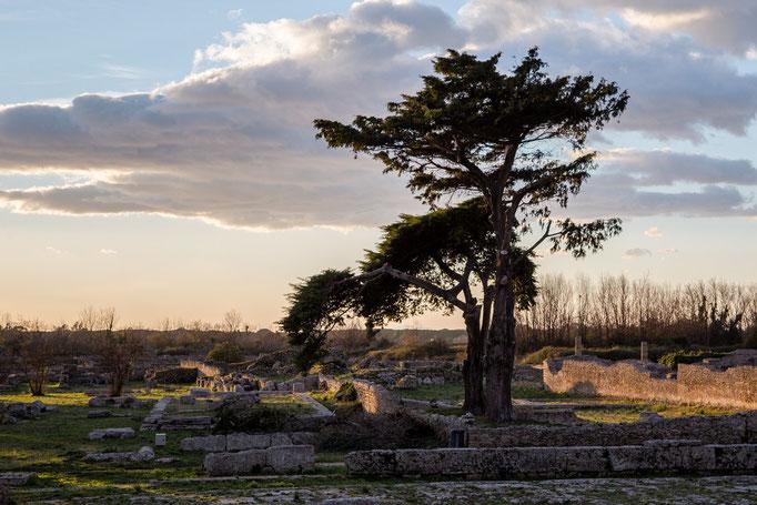 Ausgrabungen in Peastum