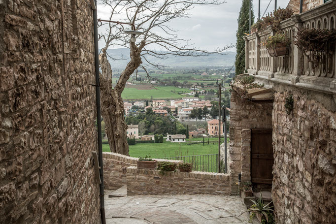 Ausblick von der Stadtmauer ins Tal.
