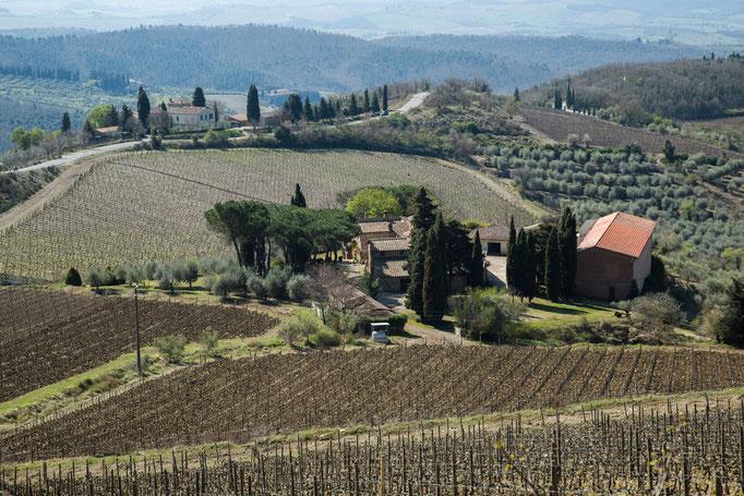 Auf den Wege von Castellina in Chianti nach Poggibonsi