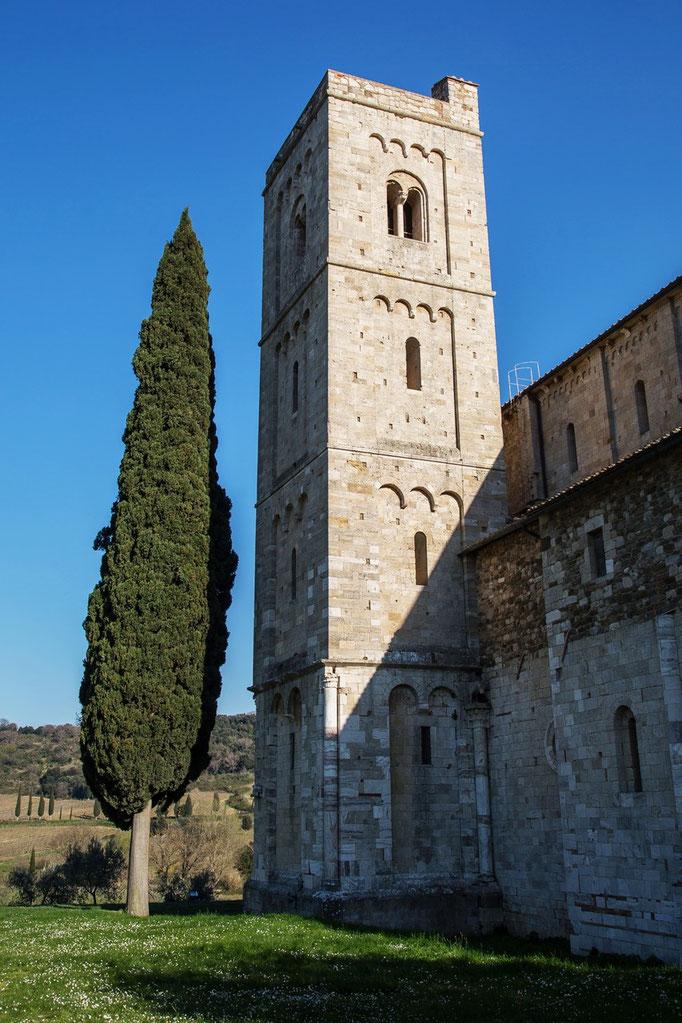 Die Zypresse hat die Höhe vom Turm noch nicht erreicht.