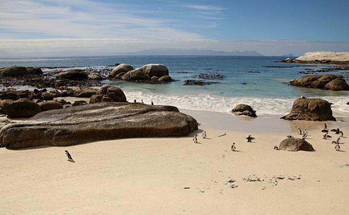 Boulders Beach - by Ralf Mayer