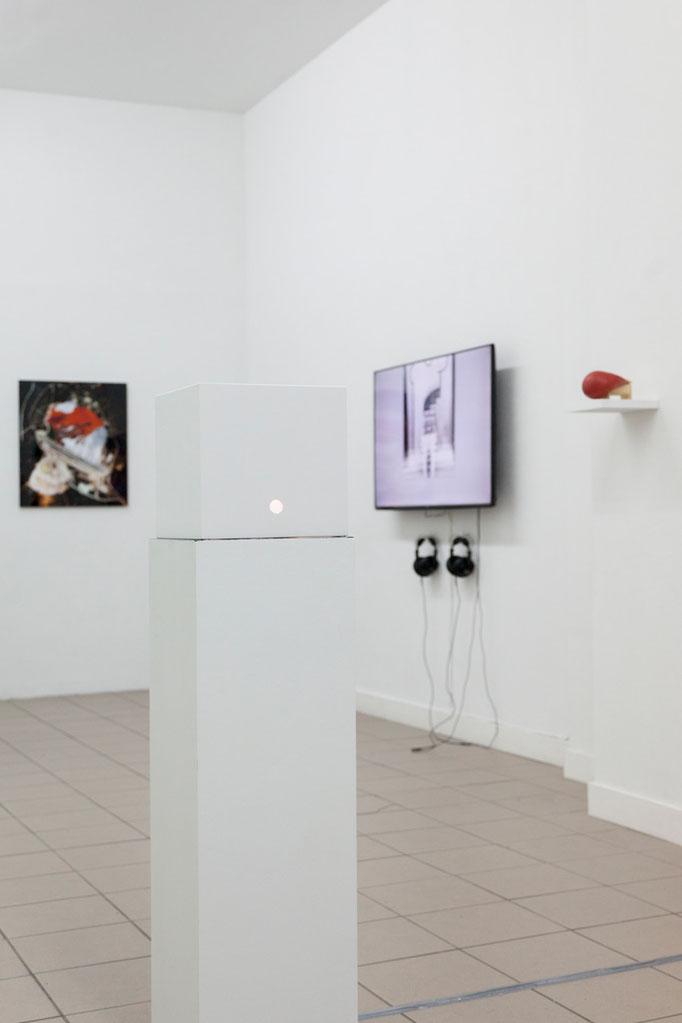 GIER - Ausstellungsansicht