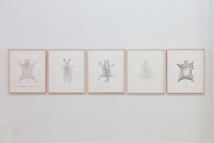 "Carolin Schneider · ""Felle"" v.l.n.r.: Löwe, Hase, Fuchs, Antilope, Bär Gouache auf Papier, 2013"
