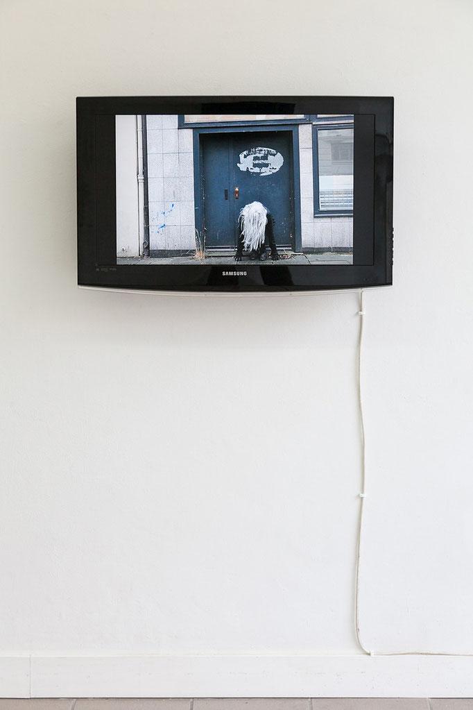 Gudrun Kenschner DVD Performancefotos, 2016