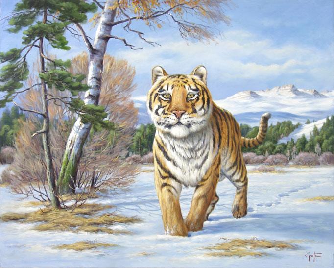 Erich Graf - Siberian Tiger
