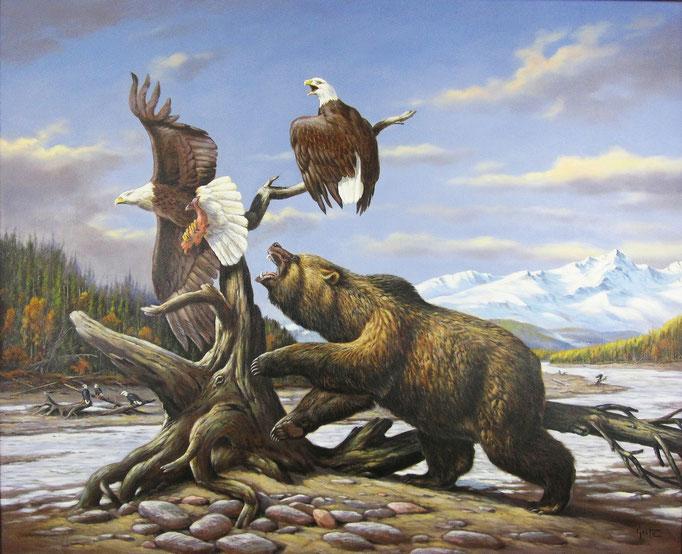 Erich Graf - Bear vs Eagles