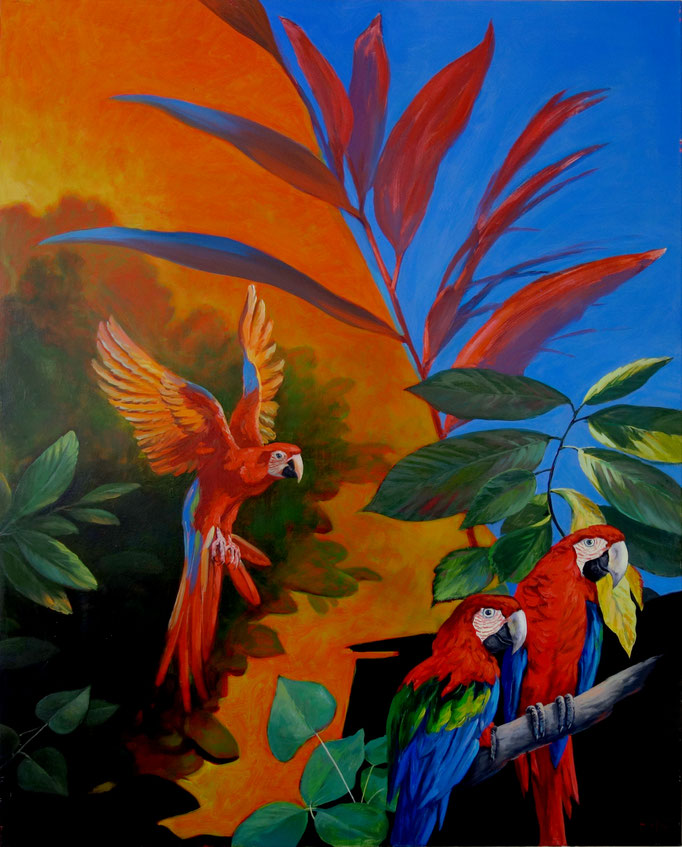 Erich Graf - Macaws