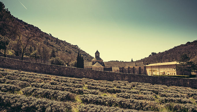 Abbaye de Sénanque #02, Provence-Alpes-Côte d'Azur. France 2015