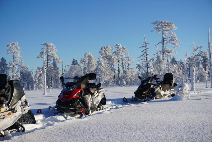 Schneemobiltour im Januar