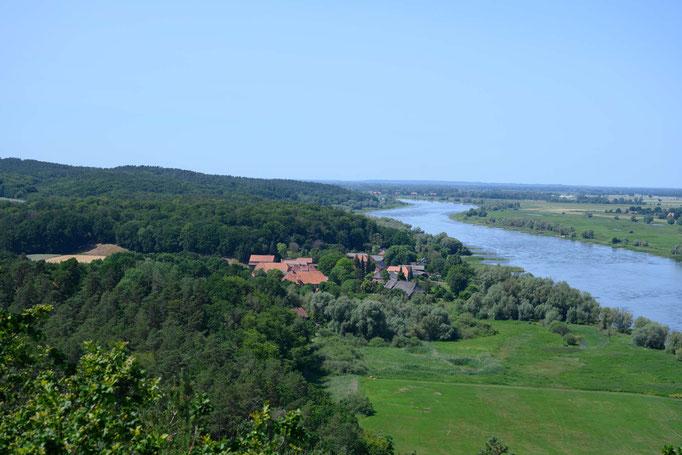 Aussicht über die Elbe