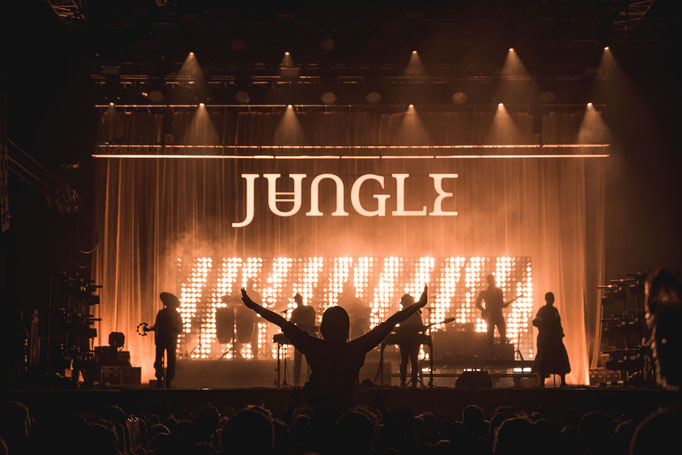 Jungle - Dockville