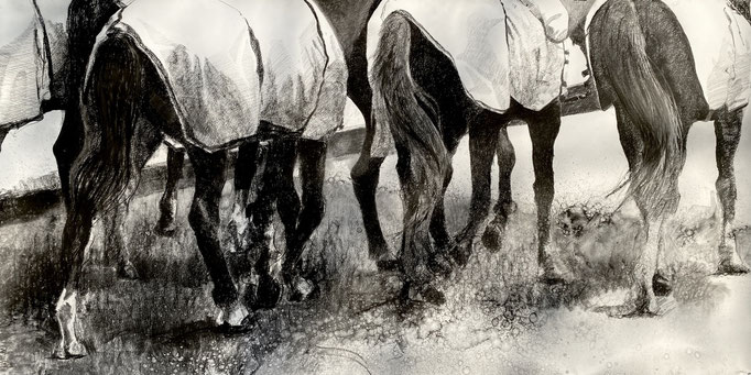 Polo Club de Bogota, charcoal on paper 150x300 cm by Philine van der Vegte