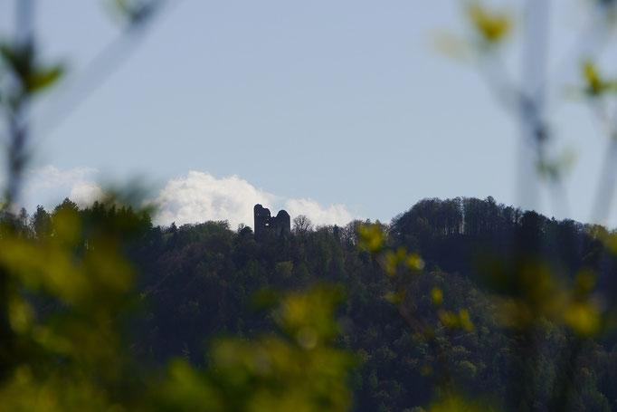 Blick auf die Burgruine Altbodman