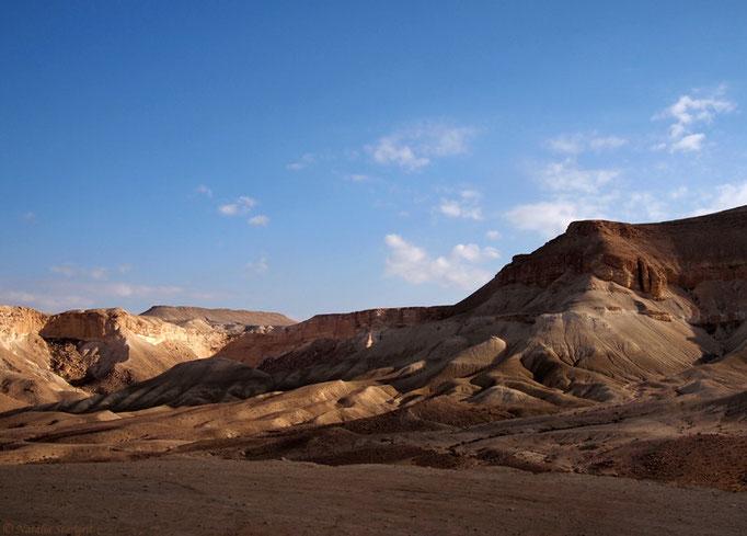 Desert Negev, 02-2011