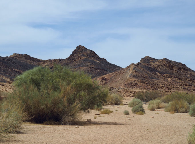 Ramon Crater, Negev desert 1