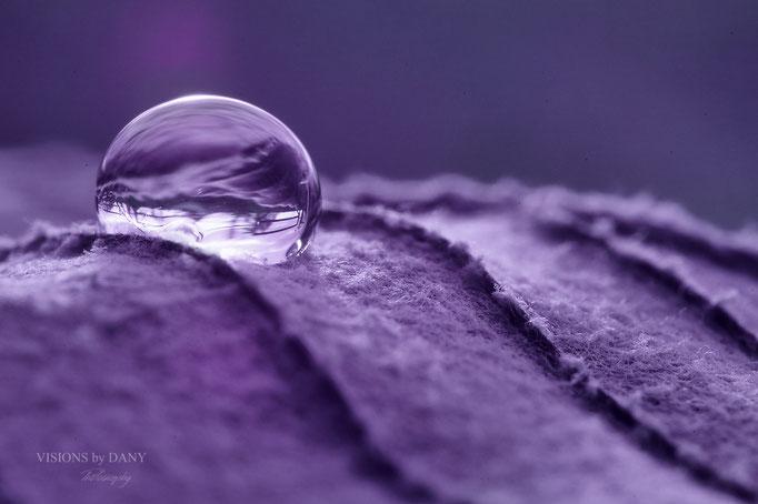 Blatt mit Wassertropfen (Violett)