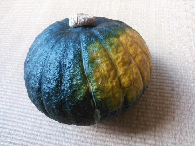 今年初、地物のかぼちゃ
