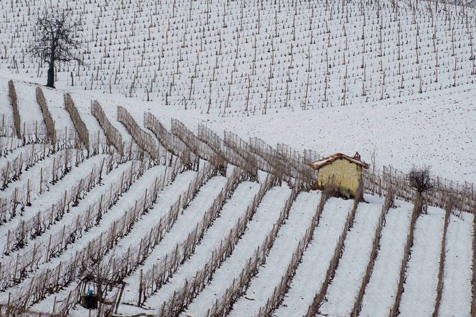 Casot in inverno -Sala Monferrato