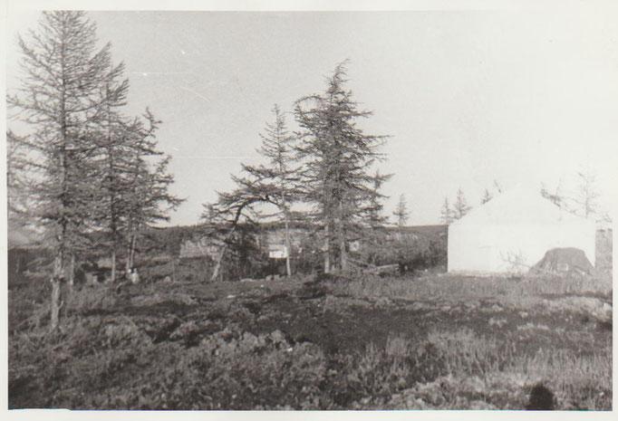 База геологической партии на берегу Уджи, Якутия 1975 г