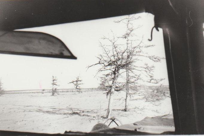 Вид на тундру из окна вездехода ГАЗ-47.  Якутия, 1975 г