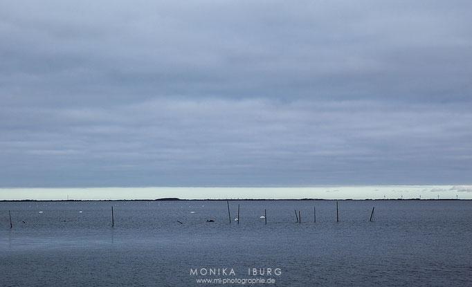 Am Ringkøbing Fjord