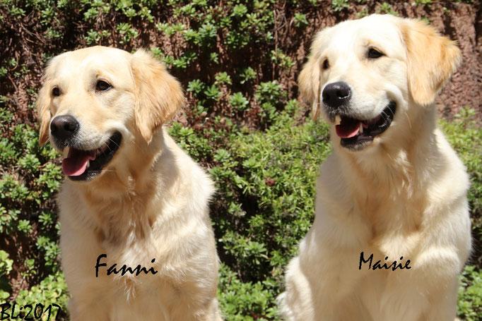 Schwesterlein - Fanni und Maisie