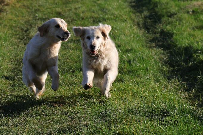 Maisie und Annafee - die beiden gehen als erste ins Ziel