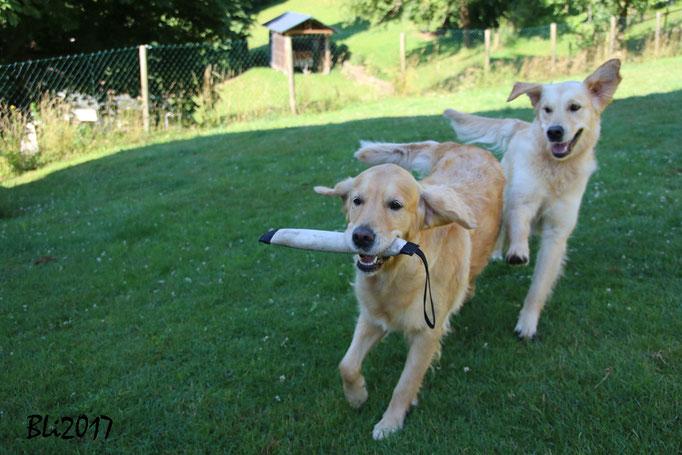 Dina und Fanni: Fangen spielen