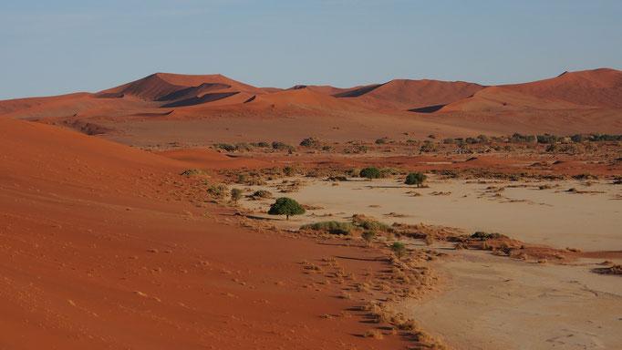 Grande mer de sable du Namib ; Sossusvlei ; Namibie