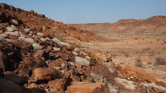 Twyfelfontein ; Namibie
