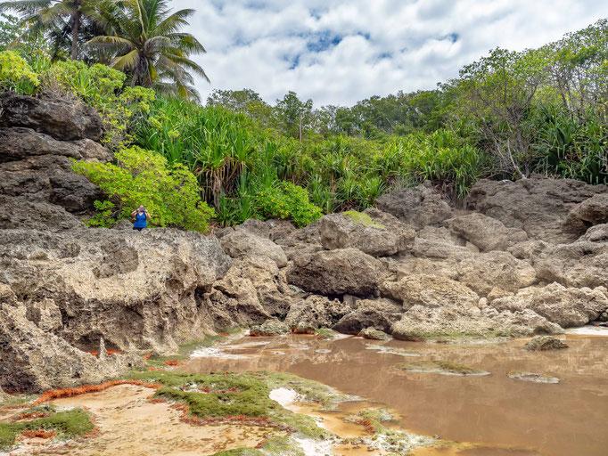 Christmas Island Dales