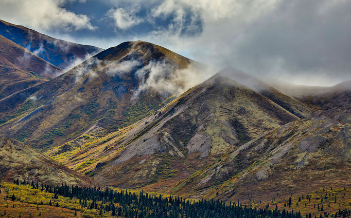 Denali National Park - Alaska - 1