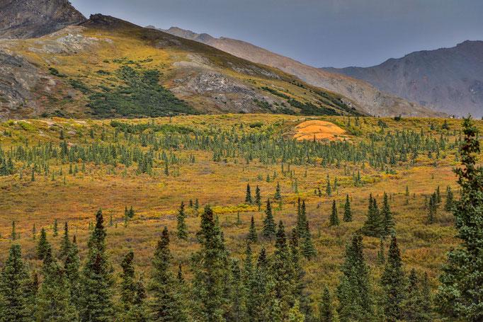 BERGE IM LICHT - Alaskas natur im Bild 1