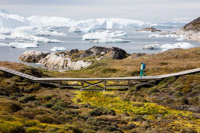 Diskobay Ilulissat - Grönland 1