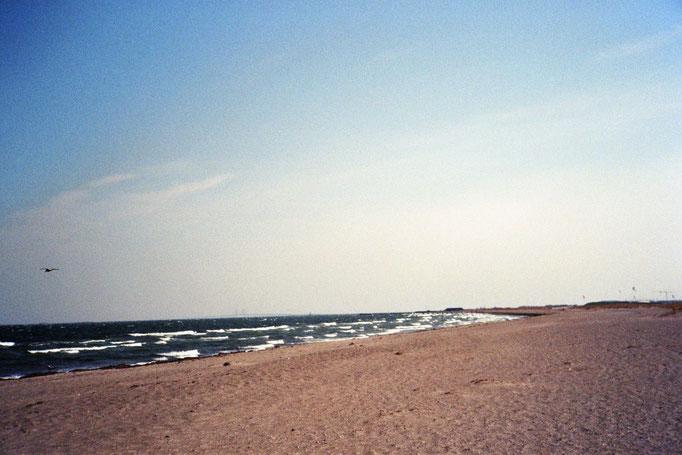 Der Strand von Kopenhagen