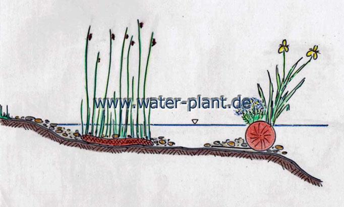 Pflanzmatten und Pflanzrollen schaffen vielfältige Teichlandschaften