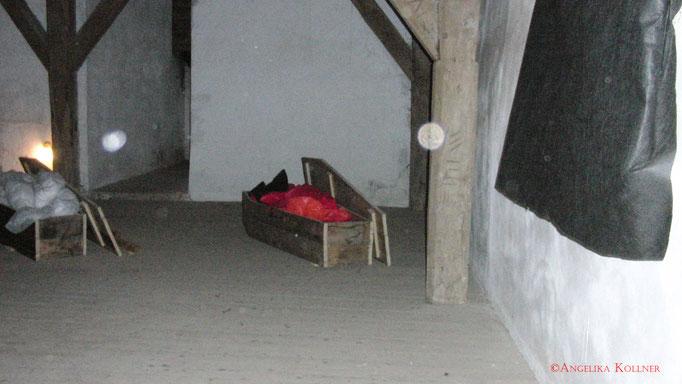 Hier noch ein paar schöne Stauborb-Exemplare. #Bitche #paranormal #ghosthunters