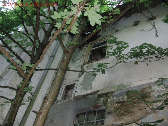 Ein Blick an der Hauswand nach oben. #Ghosthunters #Geisterjäger #paranormal #ghost