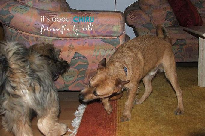 Best friends: Ferdek und Chiru