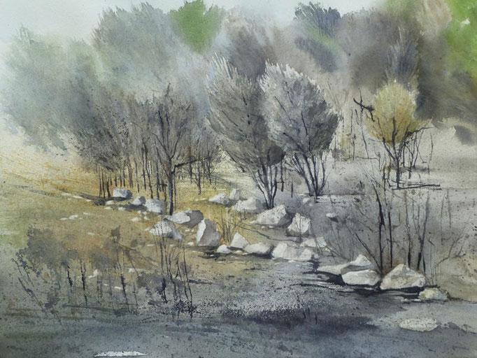 La pinède après l'incendie - n°18 - 34x40 * (2012)