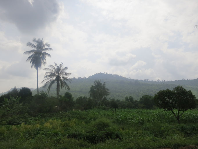 Kampot ist hügelig *_*