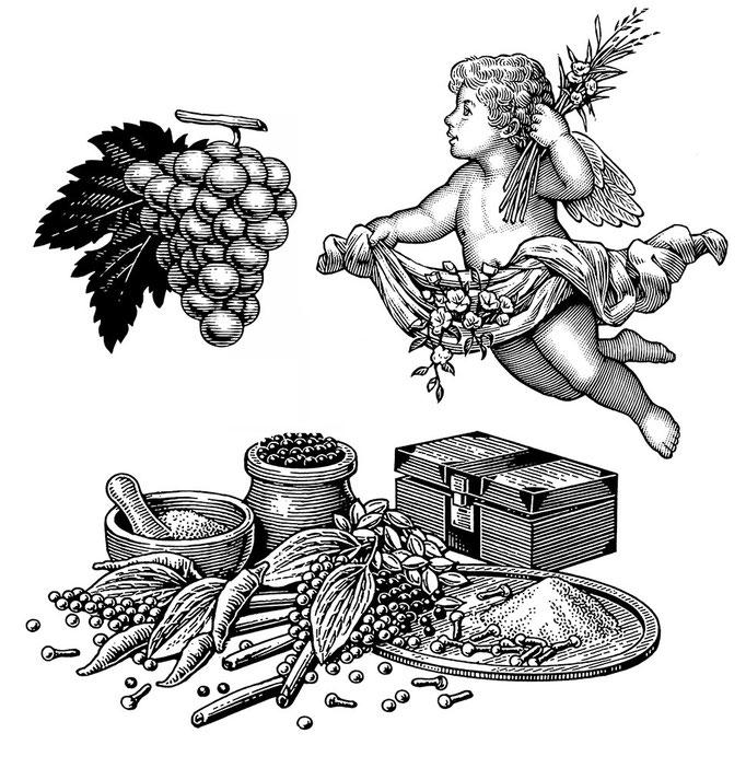 葡萄 天使 香辛料