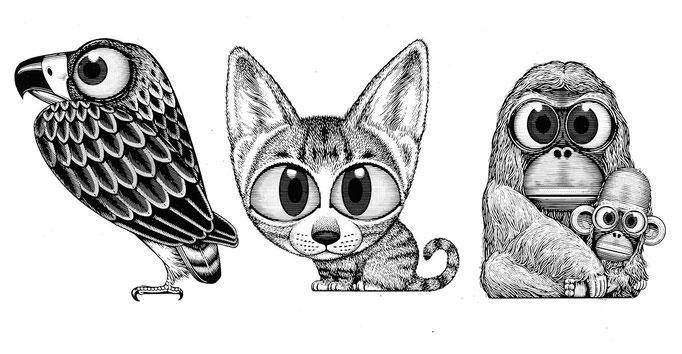 動物キャラ3種