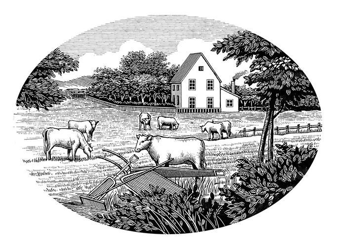 牧場 ハムのパンフレット