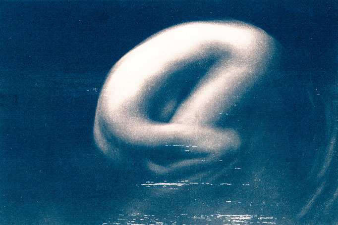Eliana Bürgin-Lavagetti | Julia III, Cyanotypie auf Fabriano Büttenkarton 300 g/m2, Bildgrösse 28,5 x 19 cm, Blattgrösse 39,5 x 30 cm, 2007. Auflage: Drei Exemplare
