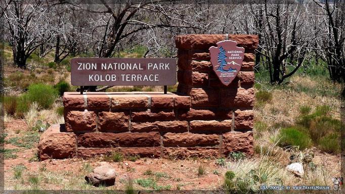 Kolob Terrace (Zion NP)